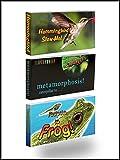Fliptomania Nature Flipbook 3-Pack: Butterfly, Hummingbird, and Frog Flip Books
