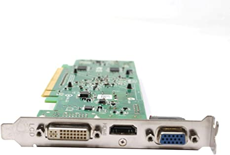 Ebid Dealz Radeon HD 3450 256MB DDR2 PCI-Express x16 Video Graphic Card F342F 0F342F CN-0F342F
