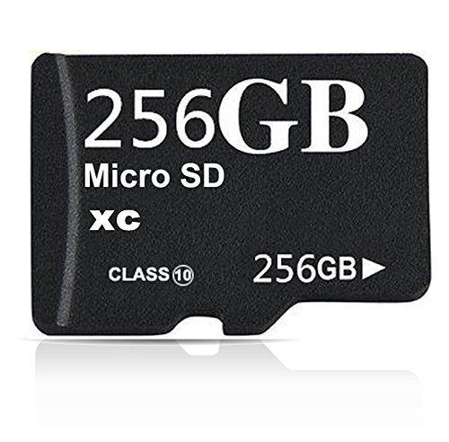 MiniMicro Class 10 Micro SDXC Memory Card