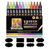 Woodsam Premium 12-Color Liquid Chalk Paint Markers - Microfiber Fine Tips – Bonus 20 Labels & 2 Extra Tips Included