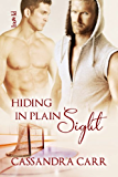Hiding in Plain Sight (Safe Harbor Book 2)