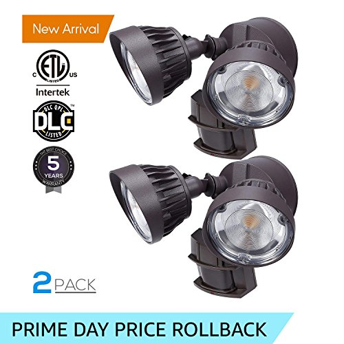 Dual Bright Led Security Light in Florida - 4