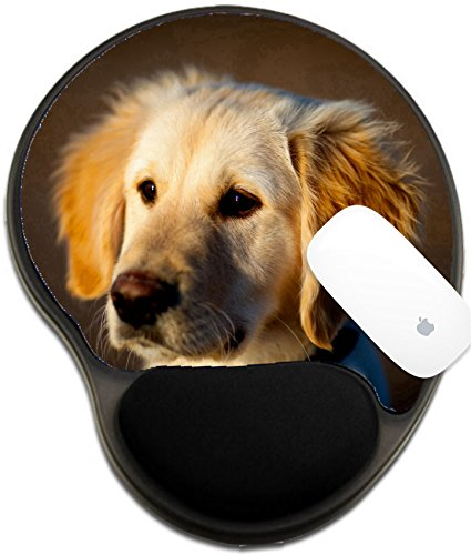 Luxlady Mousepad wrist protected Mouse Pads/Mat with wrist support design IMAGE ID 7470202 Nice specimen of dog of the race Golden Retriever -