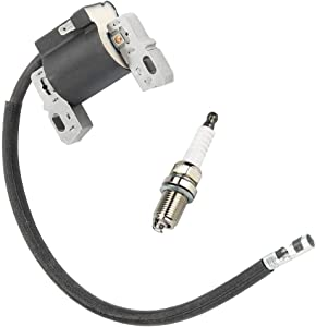 LIYYOO 591459 Ignition Coil Magneto Armature + RC12YC Spark Plug Replacement for Briggs and Stratton 492341,491312,495859,490586,591459 Lawn Mower Engines Parts