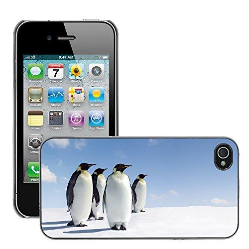 Hülle Case Schutzhülle Cover Premium Case // V00002645 Penguins // Apple iPhone 4 4S 4G