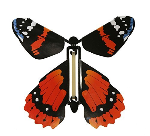 Rubber Band Powered Vehicle (Insect Lore Rubber Band Powered Wind Up Butterfly Flying Toy by Insect Lore)