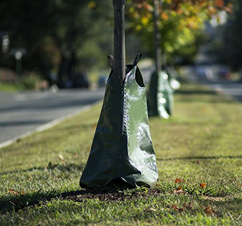 Kenley Tree Watering Bag Planting product image