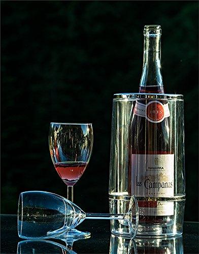 Plastique a double paroi 23 cm Argent//Noir STK Jardinion Refroidisseur de bouteilles de vin transparent