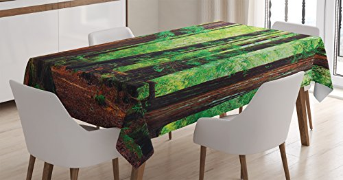 Ambesonne Woodland Tablecloth, Redwood Trees Northwest Rain Forest Tropical Scenic Wild Nature Lush Branch, Dining Room Kitchen Rectangular Table Cover, 60