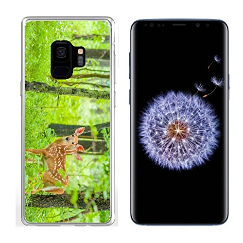 Luxlady Samsung Galaxy S9 Clear case Soft TPU Rubber Silicone IMAGE ID: 29823275 Whitetail Deer Fawn standing in the woods ()
