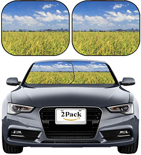 (MSD Car Sun Shade Windshield Sunshade Universal Fit 2 Pack, Block Sun Glare, UV and Heat, Protect Car Interior, Image ID: 29790838 Cereals and Sky Roads of Laos Khammouane Province)