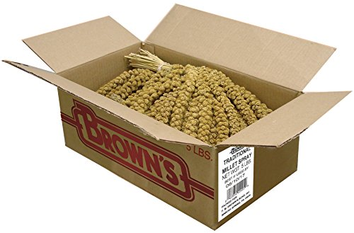 F.M. Brown's Golden Millet Spray, All-Natural Foraging Treat for Pet and Wild Birds, Sun-Cured, Grown and Harvested in the USA, 5lb For Sale