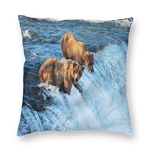 Mannwarehouse Africa Square Pillowcase Grizzly Bear in The Stream Protect The waistW18 x L18