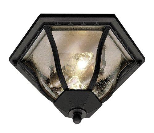 Trans Globe Lighting 4559 BK Outdoor Bostwick 8.5'' Flushmount Lantern, Black