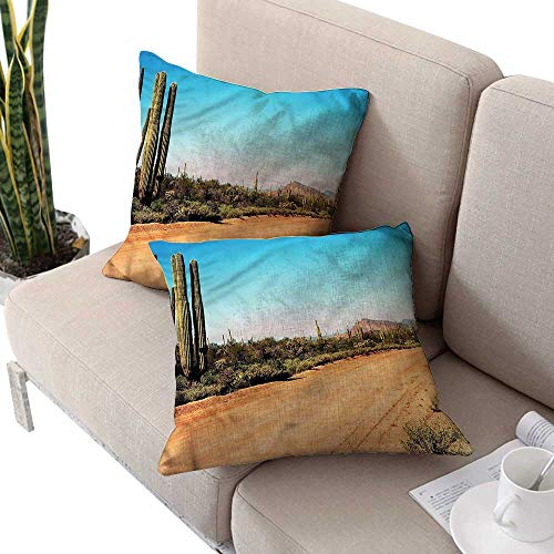 Standard Pillowcase Barry - cobeDecor Saguaro Square Pillowcases American Desert Cactus Cushion Case for Sofa,Bed 18