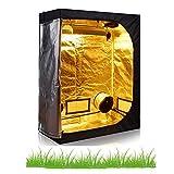 Hongruilite 24''x24''x48'' 36''x20''x63'' 32''x32''x63'' 48''x24''x60'' 48''x24''x72'' 48''x48''x78'' 96''x48''x78'' Hydroponic Indoor Grow Tent Room w/Plastic Corner (48''x24''x60'')