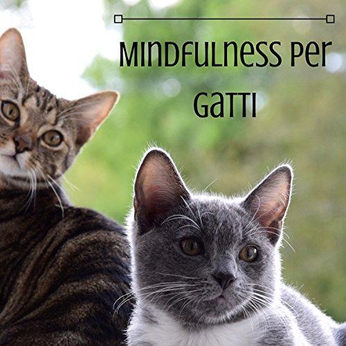 Mindfulness per Gatti - Musicoterapia Felina e Animale