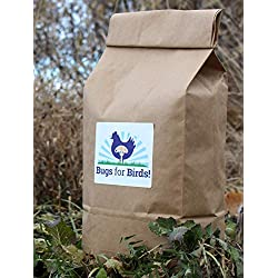 NORTH AMERICAN-RAISED Bugs for Birds! Better Than Mealworms - Dried BSF Larvae - Natural Chicken Feed Supplement / Wild Bird Treats - for Healthy Eggs and Feathers! (2lbs)