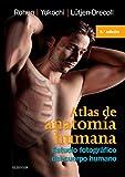 img - for Atlas De Anatomia Humana: Estudio fotografico del cuerpo humano (Spanish Edition) book / textbook / text book