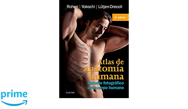 Amazon.com: Atlas De Anatomia Humana: Estudio fotografico del cuerpo ...