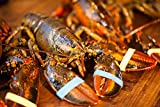 Get Maine Lobster - Live Maine Lobster (6 each 1-1.25 LB )