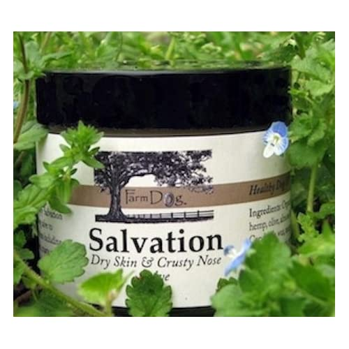 Farm Dog Naturals - Salvation Skin Care Crusty Nose Balm - Herbs Remedies for Dogs Eco Lips - Bee Free Vegan Lip Balm Lemon-Lime - 0.15 oz. (pack of 12)