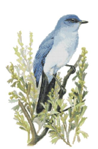 Nevada State Bird (Mountain Bluebird) and Flower (Sagebrush) Counted Cross Stitch Pattern
