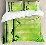 Green Duvet Cover Set Queen Size by Ambesonne, Bamboo Stems Nature Ecology Sunbeams Soft Spring Scenic Spa Health Relaxation, Decorative 3 Piece Bedding Set with 2 Pillow Shams, Green Light Green