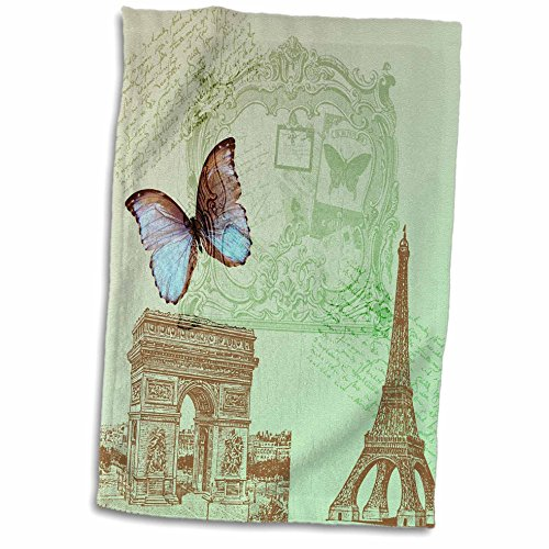 3dRose PS Vintage Butterfly twl 79195 1