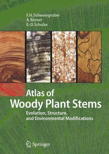 Atlas of Woody Plant Stems: Evolution, Structure, and Environmental Modifications by Fritz Hans Schweingruber (2011-04-06)