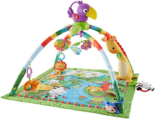 (Fisher-Price Rainforest Music & Lights Deluxe Gym [Amazon Exclusive] )