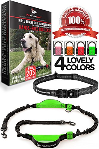 Pet Dreamland Hands Free Dog Running Leash - One/Two Medium to Large Dogs (up to 150lbs) - Adjustable Dog Walking Leash - Running Dog Belt - Waist Retractable Dog Leash (One Dog, Black & Green) - 2 Retractable Cord Leash