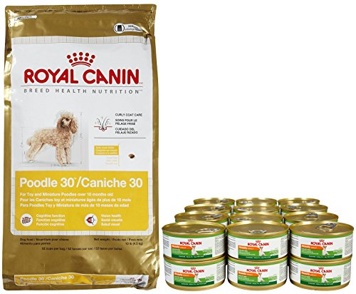 Royal Canin Breed Health Nutrition Adult Poodle Bundle