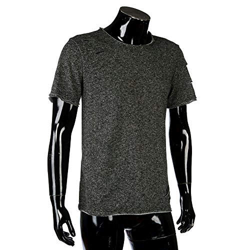 OrchidAmor Men Fashion Hole Round Collar Tees Shirt Short Sleeve T Shirt Blouse Polo Shirts for Men Ralph Lauren Gray ()