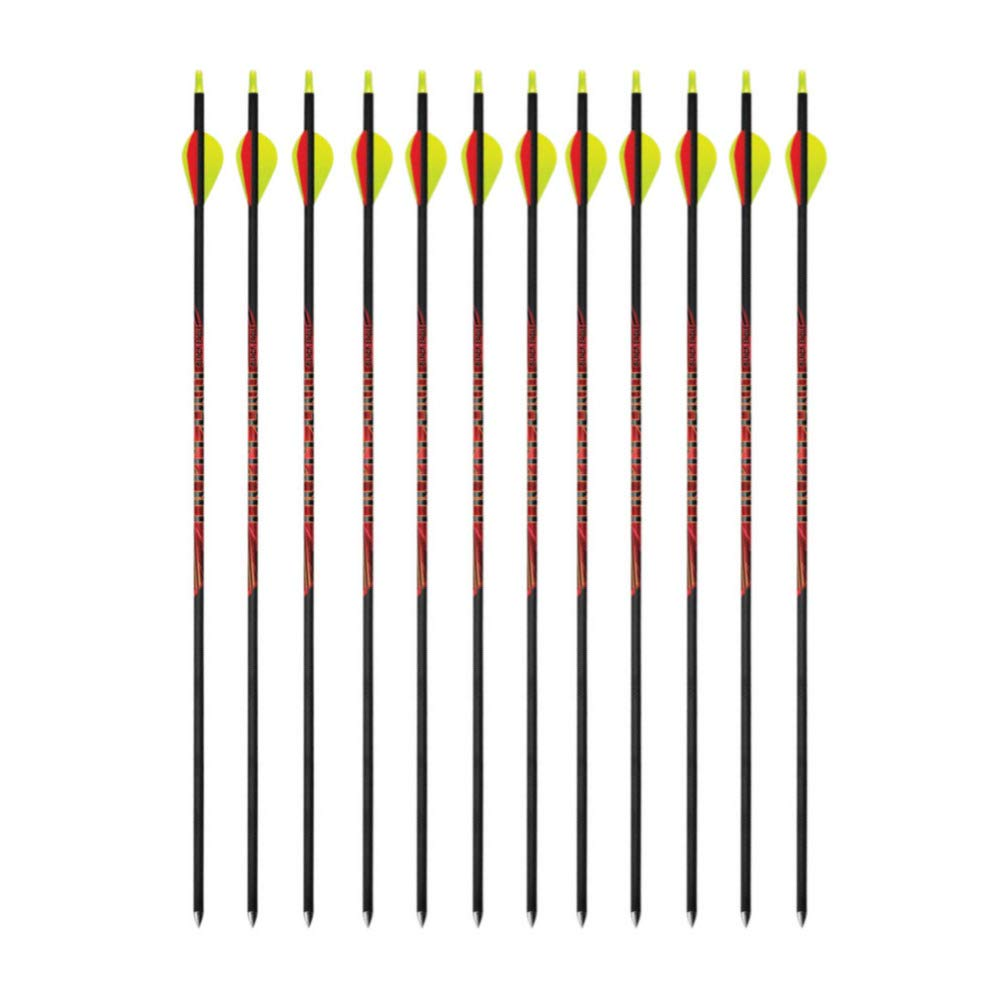 Black Eagle Outlaw 400 Spine Fletched Carbon Arrows (32'' Shaft.005'', ± 2 Grain) Bundle (12 Items) by Black Eagle
