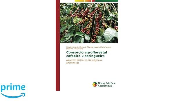 Consórcio agroflorestal cafeeiro x seringueira: Aspectos biofísicos, fisiológicos e anatômicos (Portuguese Edition): Cláudio Roberto Meira de Oliveira, ...