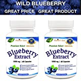 Wild Blueberry Extract Supplement Capsules - Made from Organic Berries - Powerful ANTIOXIDANT - GMO and Gluten Free - 1000 mg PER Serving - 120 Capsules (2-4 Months) - Supports SLOWING Aging