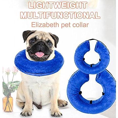 HHF-Mascotas Suministros Collar de Seguridad Inflable Mascota Collar Perro Gato Herida Protección de la curación AntiBite: Amazon.es: Productos para ...