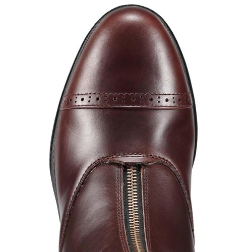 Paddock Mens Pro Devon Chocolate Vx Ariat qCRgYw1