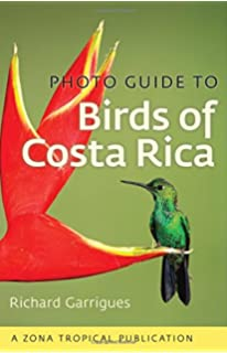 Photo Guide To Birds Of Costa Rica Zona Tropical Publications