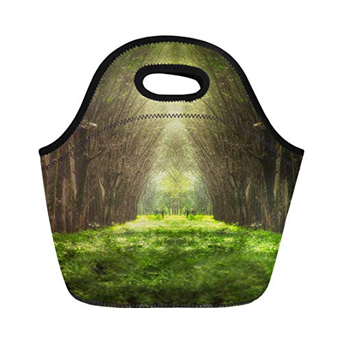 Semtomn Lunch Tote Bag Green Imaginary Tree Tunnel in the Forest Nature Woods Reusable Neoprene Insulated Thermal Outdoor Picnic Lunchbox for Men Women