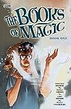 Books of Magic Book One (Arcana: The Books of Magic)