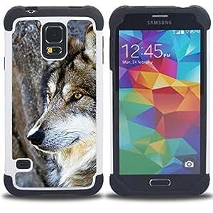 - wol wild tree nature dog animal brown/ H??brido 3in1 Deluxe Impreso duro Soft Alto Impacto caja de la armadura Defender - SHIMIN CAO - For Samsung Galaxy S5 I9600 G9009 G9008V