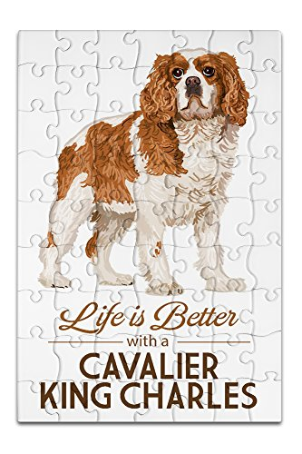 Cavaliers Wall Framed (Cavalier King Charles - Life is Better - White Background (8x12 Premium Acrylic Puzzle, 63 Pieces))