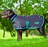 570490 28 in. Windbreaker Fleece Lined Dog Violet Grey