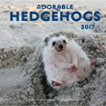 Adorable Hedgehogs 2017: 16-Month Cal...