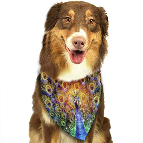 FRTSFLEE Dog Bandana The Eternal Trance Scarves Accessories Decoration for Pet Cats and Puppies
