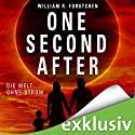 One Second After: Die Welt ohne Strom Audiobook by William R. Forstchen Narrated by Peter Lontzek