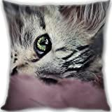 HARLAN Custom Zippered Throw Pillow 50x50cm(20x20inch) Large Size 600g(1.32lb) (Twin sides Print)- kitty face eyes Leaning Cushion