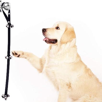 Amazon Com Sungrow Dog And Puppy Potty Training Bells Because